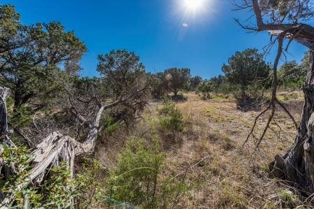 SOLD – 13533 Trails End, Dripping Springs, TX 78620 – Heritage Country