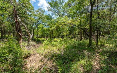 SOLD – 127 Deep Woods Ct, Cedar Creek, TX 78612 – Arbor Hills